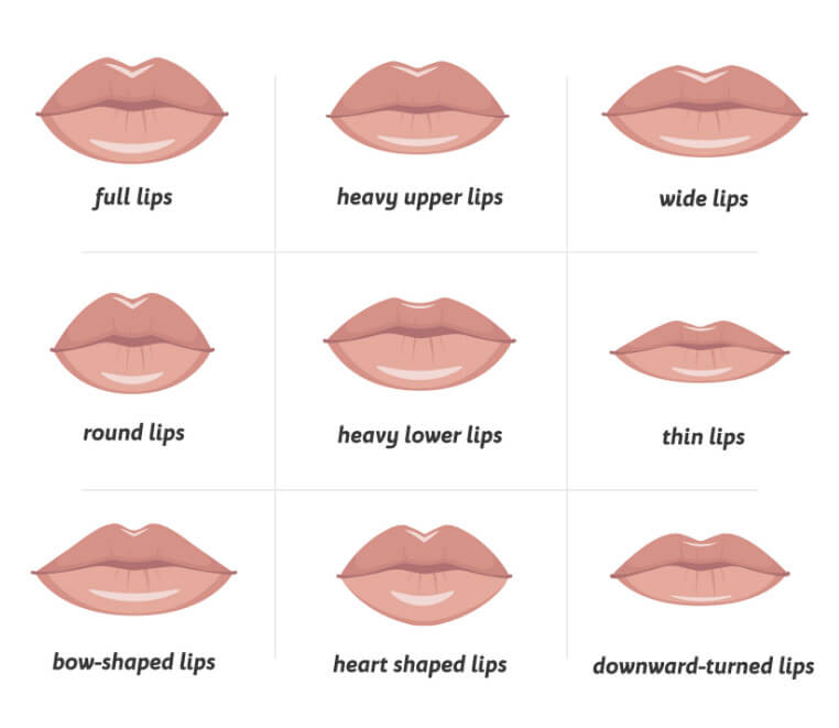 Filled Lips types and shapes